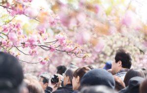 3/31はお花見 LIKE JOBライター×読者交流会 ~働き方・ライフスタイル座談会~