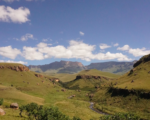 南アフリカに来て感じた、『働く』という価値観の変化